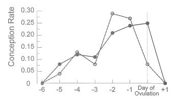 排卵日とタイミング時期の妊娠率